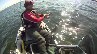 Shallow Water Salmon - The Pro Angler Twist