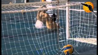 ABC of WP Class 5 Shot & Block Drills without Goalie water polo