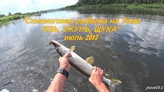 Спининговая рыбалка на Томи//ЯЗЬ, ОКУНЬ, ЩУКА//июль 2017//