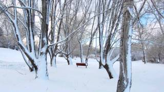 Winter Songの動画