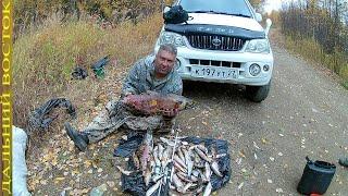 Рыбалка на таёжной реке поплавочной удочкой