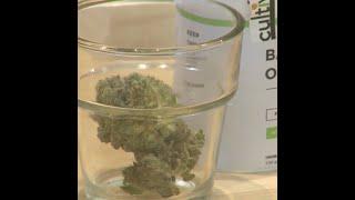 First legal, recreational marijuana sale on east coast expected Tuesday