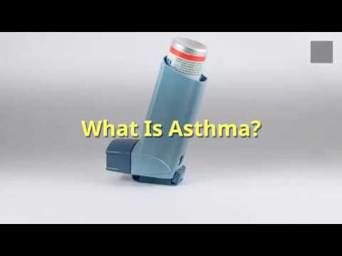 What Is Asthma Allergies Hay fever Wheezing and Other Signs And Symptoms