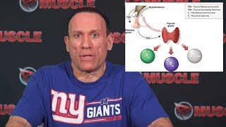 Thyroid Hormone Explained by Dave Palumbo