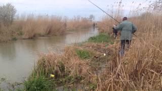 рыбалка в хуторе Верхнем краснодарского края 07.04.15