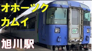 特急オホーツクとカムイが旭川駅を元気に発車 LOVE HOKKAIDO!