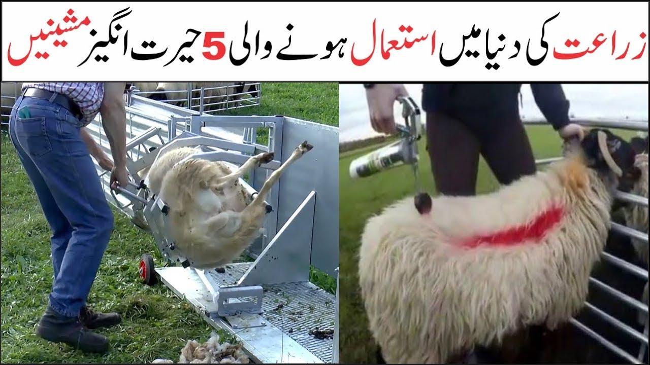 Amazing Farming Technology and Machines   Asif Ali TV
