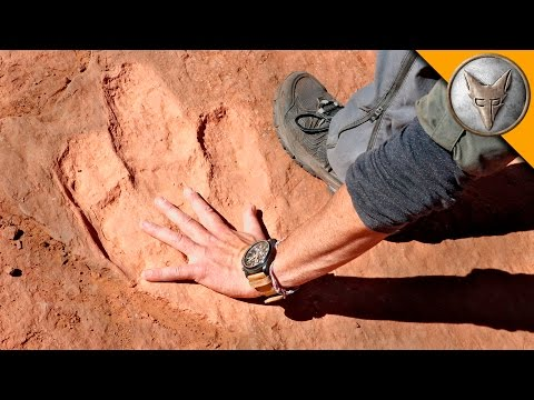Thumbnail: Hunting for Dinosaur Tracks!