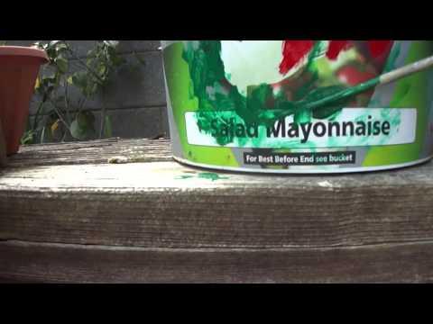 Как украсить сад летом своими руками