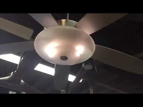 54 Minka Aire Airus Ceiling Fan At