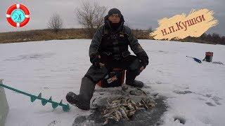 н.п.Кушки второй лёд (отчёт с рыбалки)