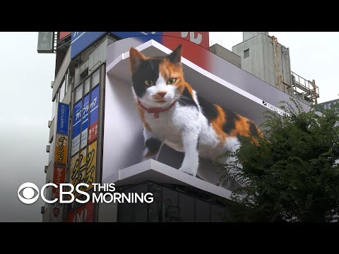 3D digital billboard image of a giant cat draws attention in Tokyo