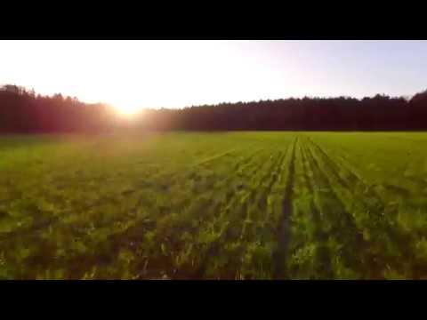 Flying Low Over Field