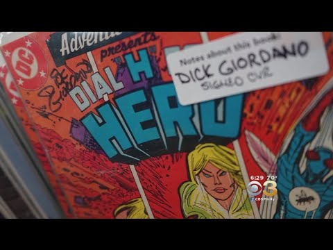 Comic Enthusiasts Celebrate Free Comic Book Day