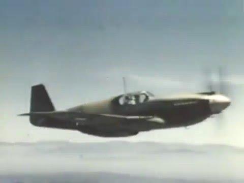 Wings P 51