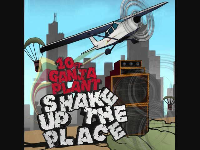 10-ft-ganja-plant-shake-up-the-place-10ftganjaplant420
