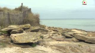 La Pointe du Conguel au naturel  - TV Quiberon 24/7