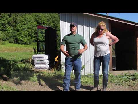 Leasing to a Maple Producer