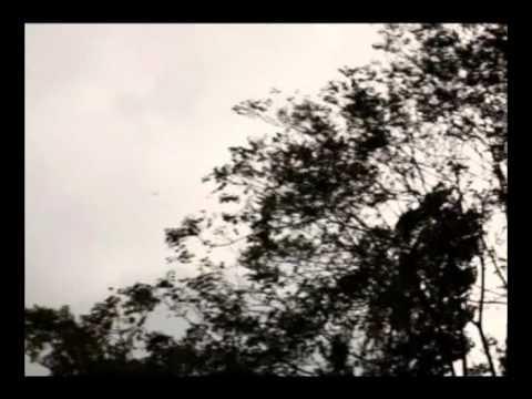 İsmail Altunsaray - Zeynep`e Ağıt [© Kalan Müzik]