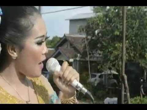lagu cewek cantik campur sari konco tani lagu by patri entertaintment & radesta kayong utara kalbar