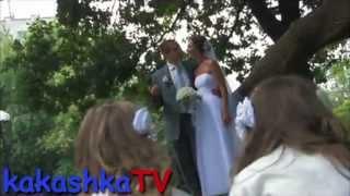 прикол на свадьбе Смешно :D