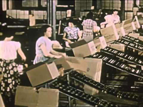 Your Career in the Paper Industry (1952)
