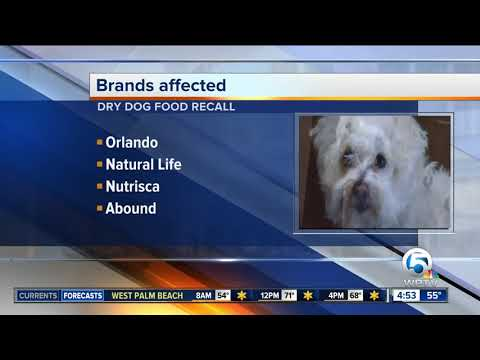 Joe Johnson - 9 brands of dry dog food recalled