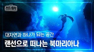 [랜선 여행✈️] 자연의 신비를 담은 인생 다이빙 스팟! 북마리아나 로타섬 [정글의 법칙|SBS 방송]