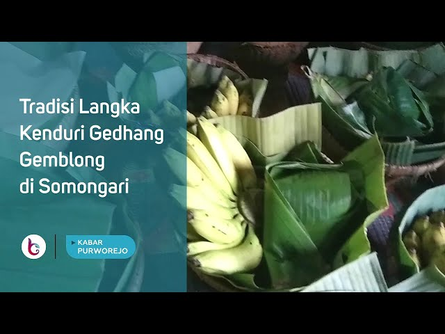 Tradisi Langka, Kenduri Gedhang Gemblong di Somongari