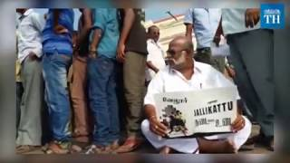 catching-the-bull-by-its-horns-jallikattu-protests-across-tamil-nadu