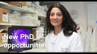 We're searching for the brightest minds in cancer research…apply a #phd at icr, member institution of university london. ⠀ fully-funded st...