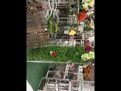 7 February 2017 flower shop qatar doha