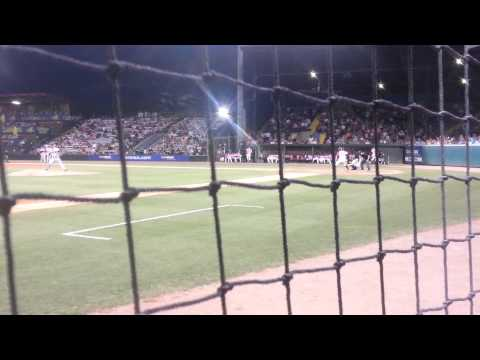 A Night With the Savannah Sand Gnats