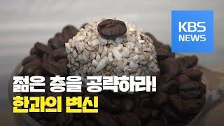 """""""전통 한과도 변해야""""…젊은 층 공략 / KBS뉴스(N…"""