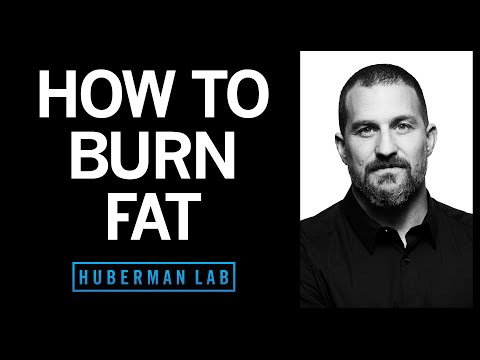 How to Lose Fat with Science-Based Tools   Huberman Lab Podcast #21