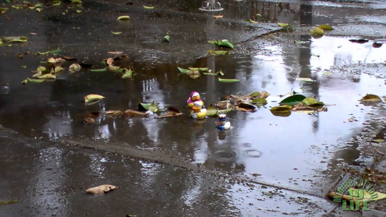 Image result for rain puddle