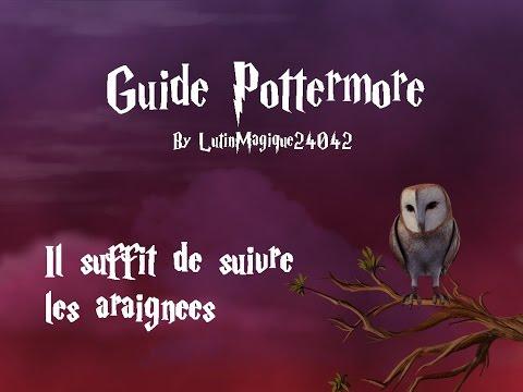 Guide Pottermore // Il suffit de suivre...