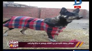 صباح دريم | صورة اليوم.. مواطن يحمي كلبه من برد الشتاء ويصنع له بدلة وكرافت