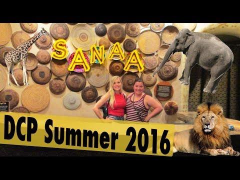 Dinner at Sanaa - DCP Summer 2016 | JessRuby