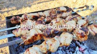 алинаколомоец шашлыкрецепт Очень вкусный шашлык рецепт Отдых на турбазе Днепровские свитанки