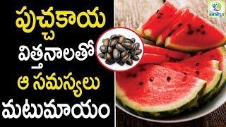 Watermelon Seeds Health Benefits - Health Tips in Telugu || Mana Arogyam