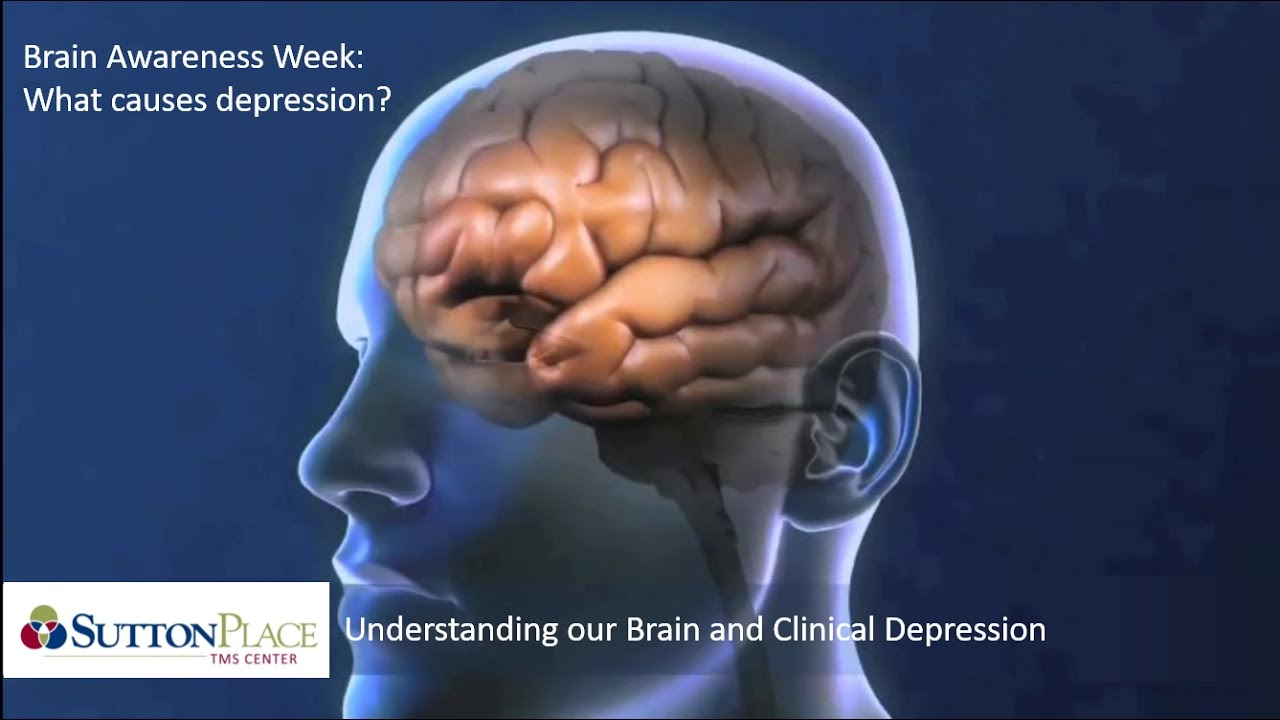 Brain Biology and Depression - YouTube