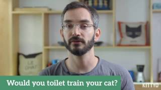Toilet training your cat