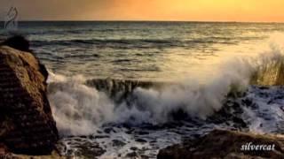 Feelings.Чувства.Саксофон и море.Saxophone( Relaxing music)