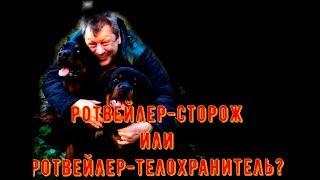 РОТВЕЙЛЕР СТОРОЖ ИЛИ РОТВЕЙЛЕР ТЕЛОХРАНИТЕЛЬ.дрессировка и воспитание собак