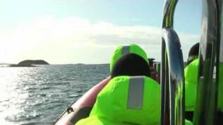 Havrafting / RIB på Herøy i Nordland med Seløy Kystferie