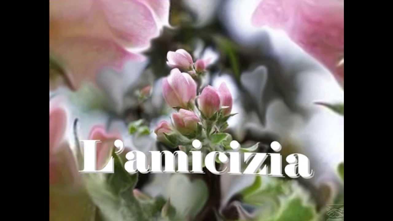 Bien-aimé RIFLESSIONI SULL' AMICIZIA - YouTube YM07