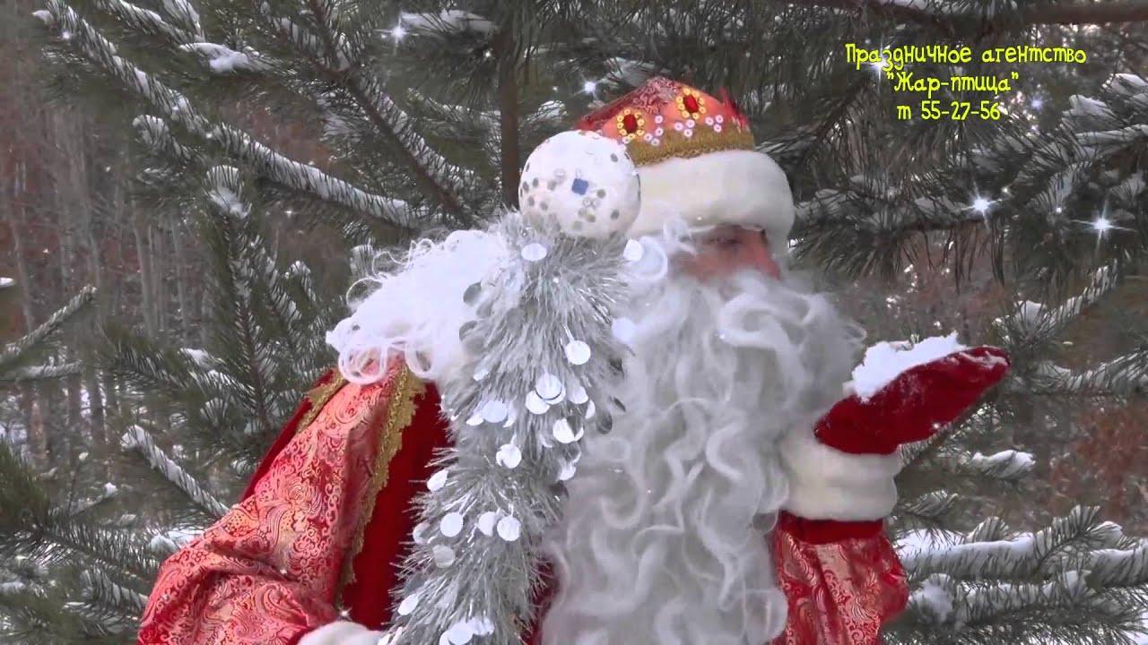 дед мороз т 55-27-56 т Благовещенск