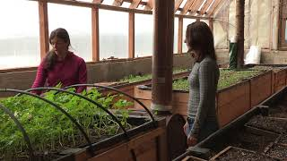 A Passive Solar Greenhouse - In the Alaska Garden with Heidi Rader