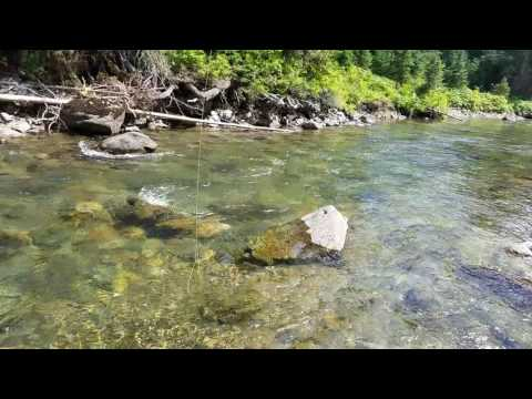 Essential Tip For Dry Fly Fishing Downstream